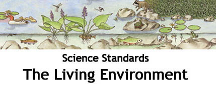 Living Environment Standards BIG Posters