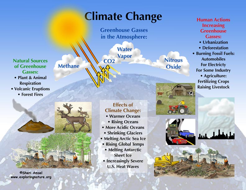 the effects of global climate change Definition of global warming, what is global warming, what is climate destabilization, what is climate change, what are greenhouse gases, what are the causes, effects, solutions, tipping points, & facts of global warming, global warming defined, how does global warming occur, how to measure global warming reduction progress accurately, how to.