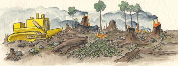 Dissertation environmental issues