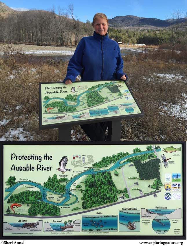 Essex County Soil & Water Ausable River Reclamation Sign