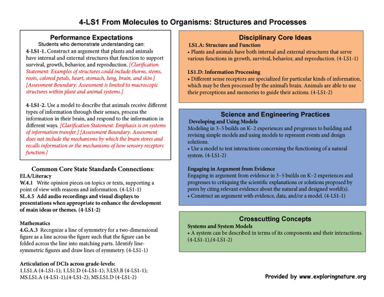 Grade 4 - 4-LS1 From Molecules to Organisms: Structures and Processes