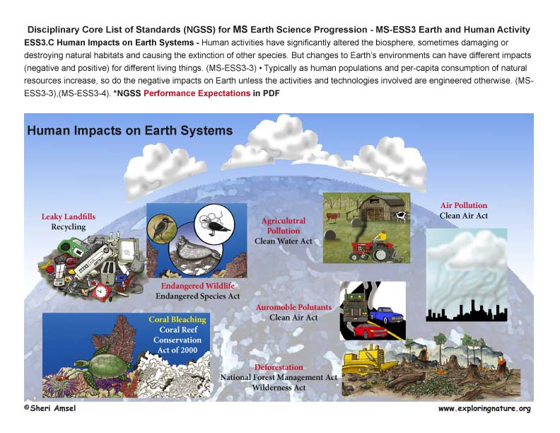 Disciplinary Core List of Standards (NGSS) for 6-8 Earth Science with Illustrated Posters