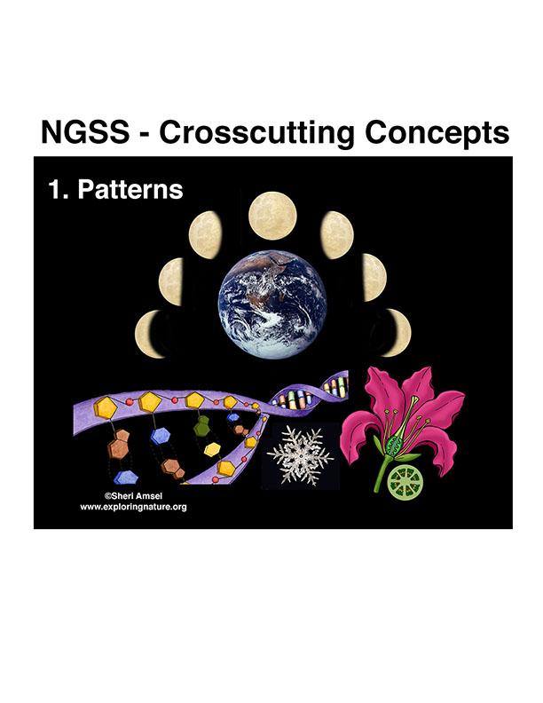 Appendix G. Crosscutting Concepts Posters