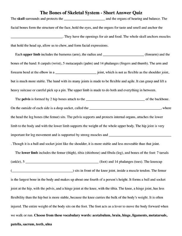ptlls assignment 5 essays