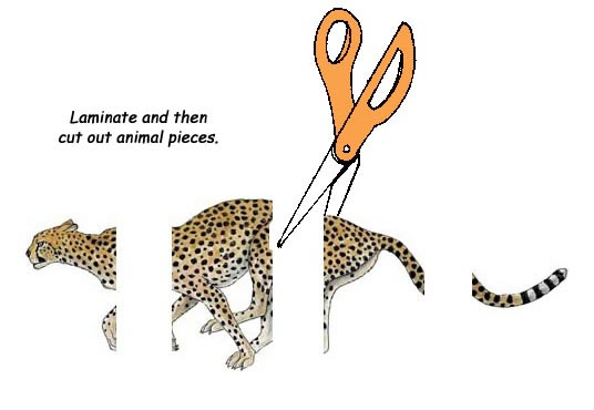 Matching Animal Parts