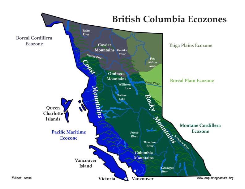 big bear california map with 1760 on Bigfoot Sighting Recorded North Carolina Mountains furthermore 1760 moreover Cuzco Peru as well Chino moreover Cali Logo Wallpaper.