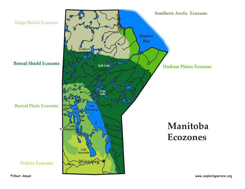 Canadian Province - Manitoba ecozones