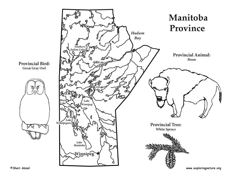 Canadian Province - Manitoba map