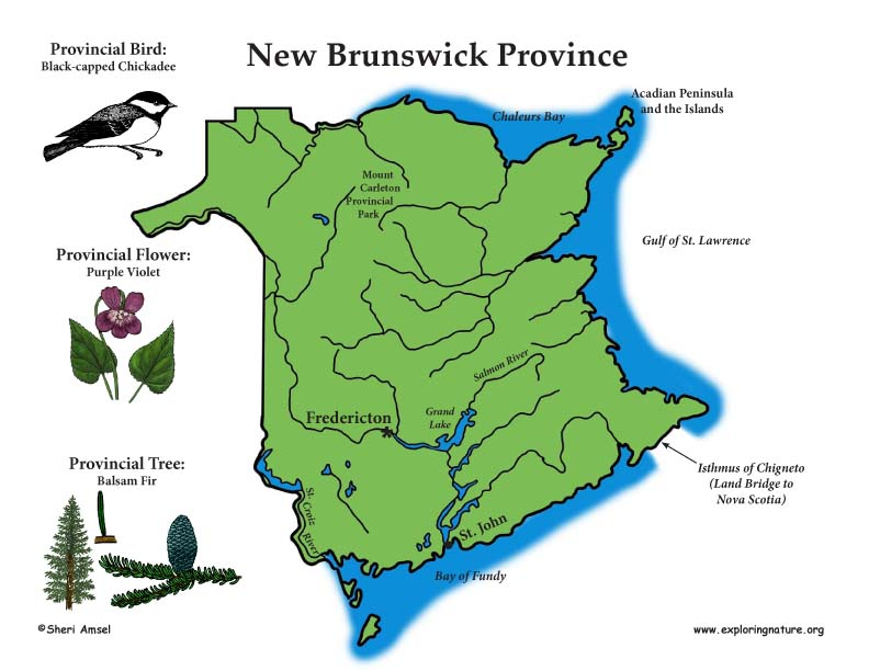 Canadian Province - New Brunswick color poster