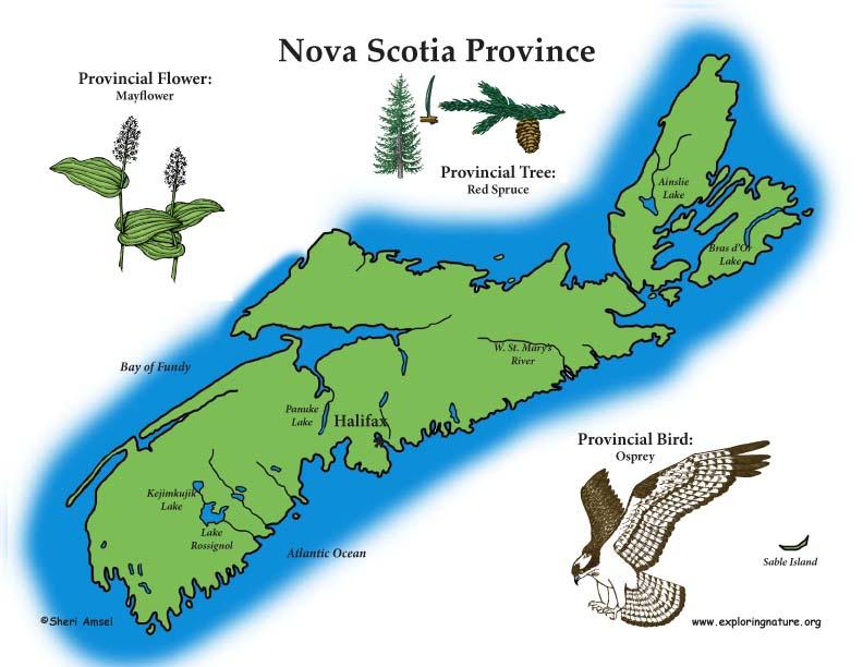 Canadian Province - Nova Scotia habitat Poster