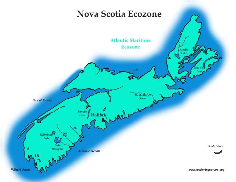 Canadian Province - Nova Scotia ecozones