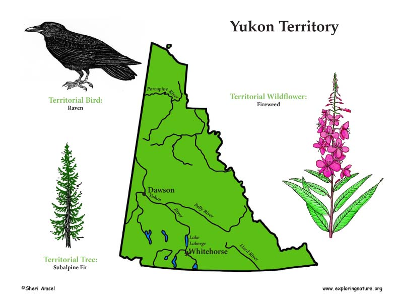 Canadian Territory - Yukon color map