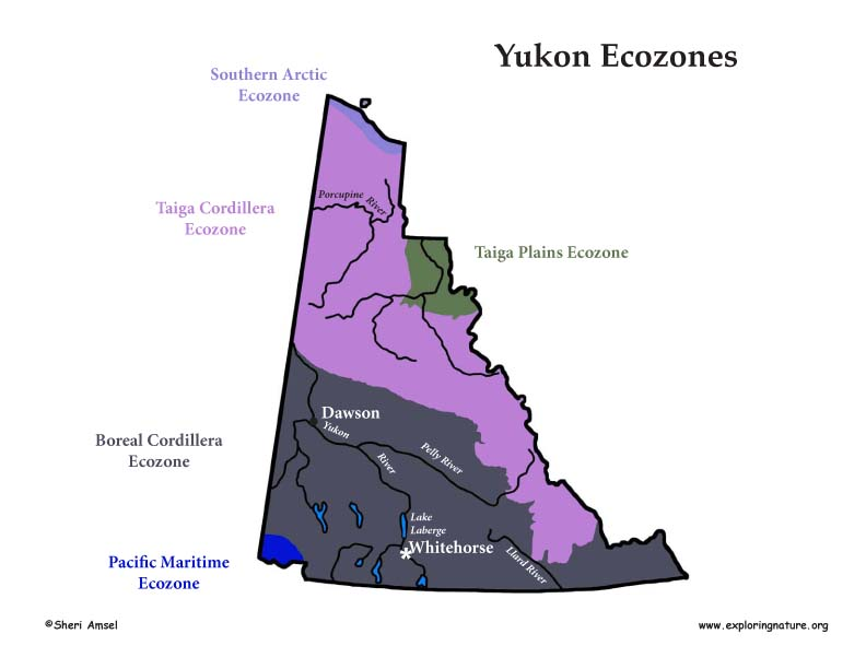 Canadian Territory - Yukon ecozones