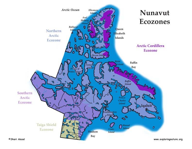 Canadian Territory - Nunavut ecozones