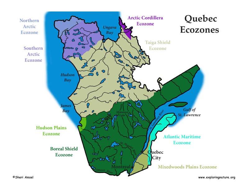 Canadian Province - Quebec ecozones