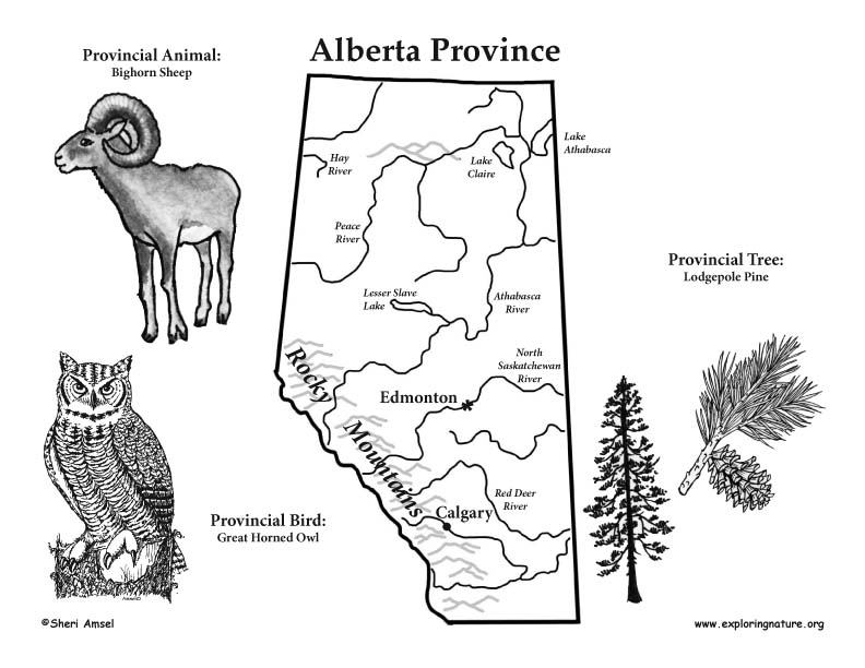alberta coloring pages - photo#10