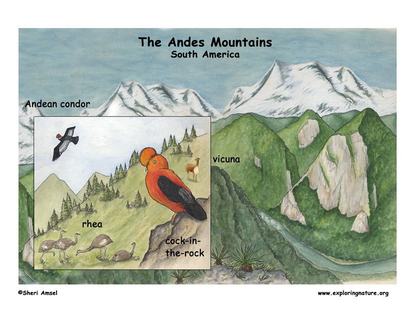 Andes of South America
