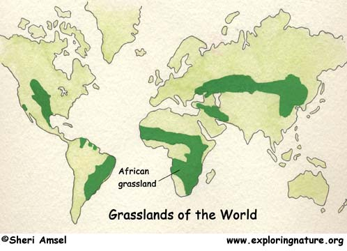 savanna grassland africa map