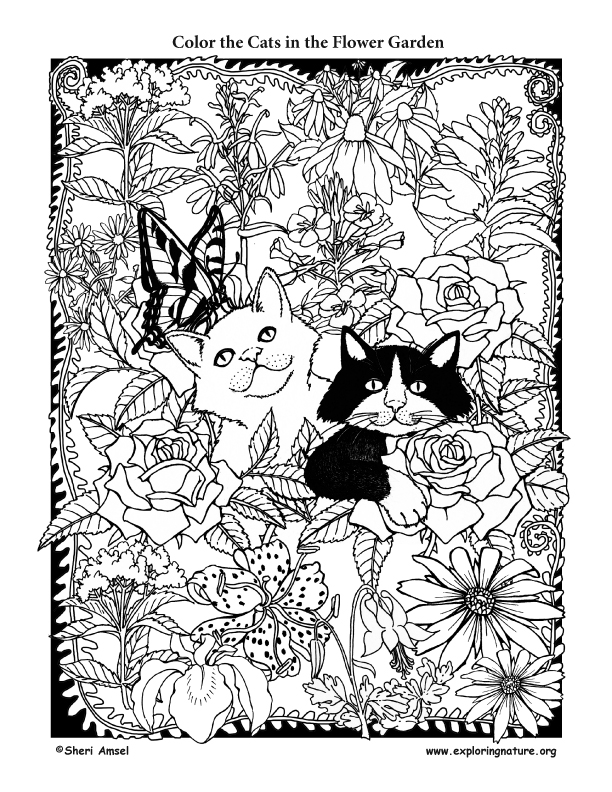 Cats in the Flower Garden Coloring