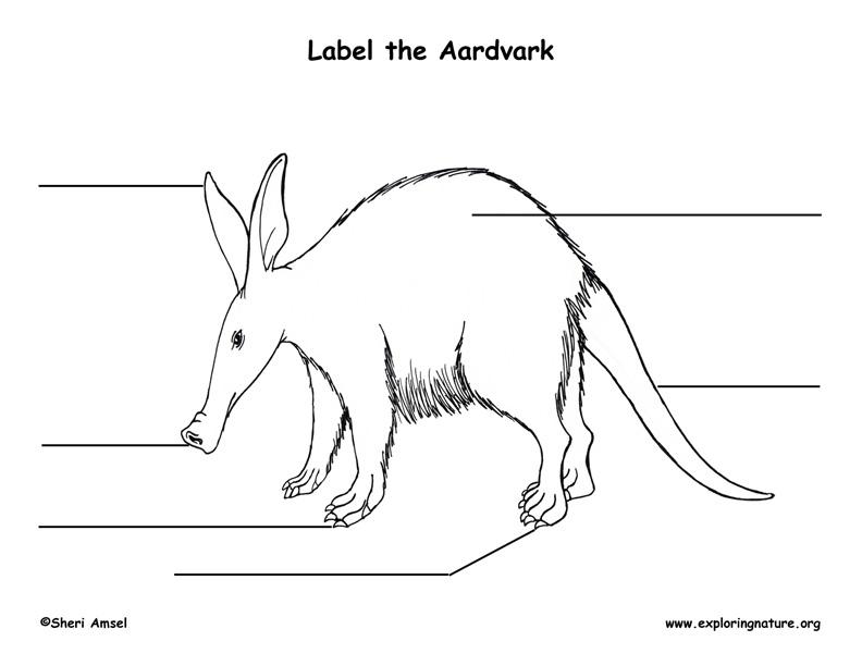 Aarvdark Labeling Page