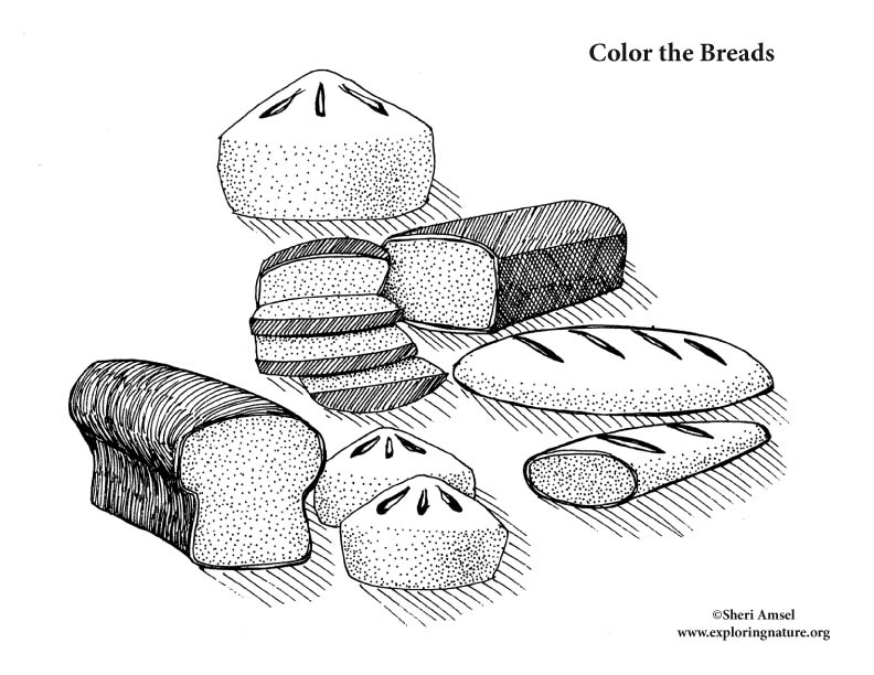 Breads Coloring Page