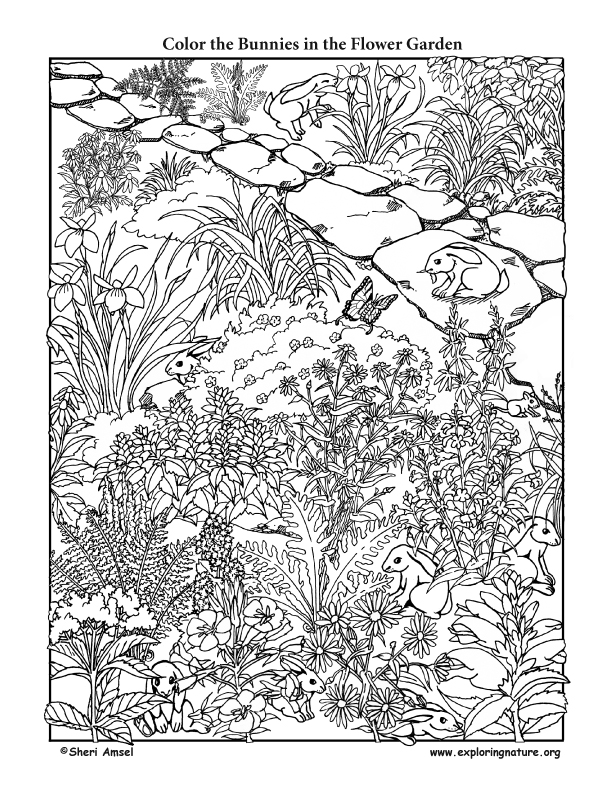 Bunnies in the Flower Garden - Coloring Page