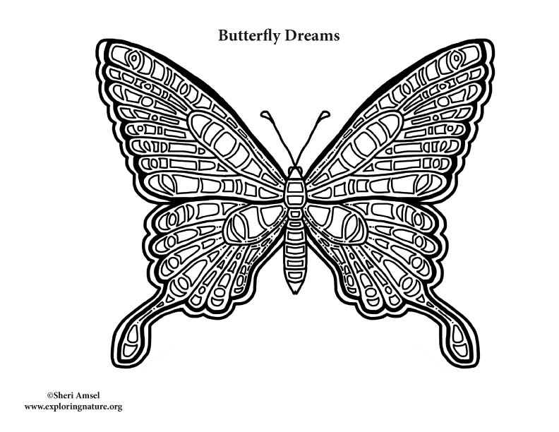 Butterfly Dreams Coloring Page