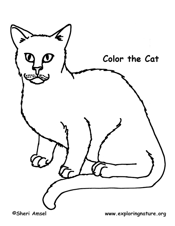 farm animal coloring pages. Farm Animal Coloring Pages