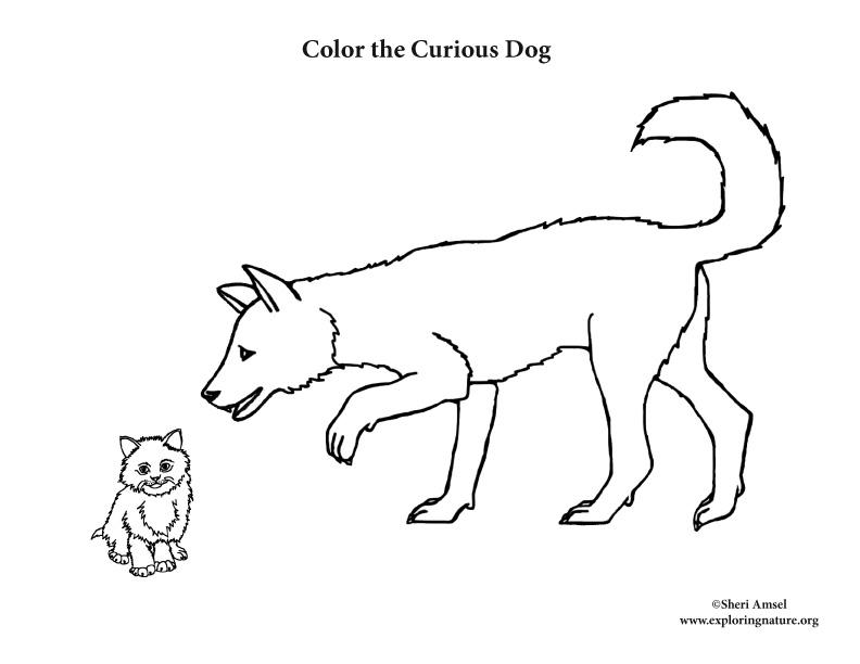 Dog Sniffling Kitten Coloring Page