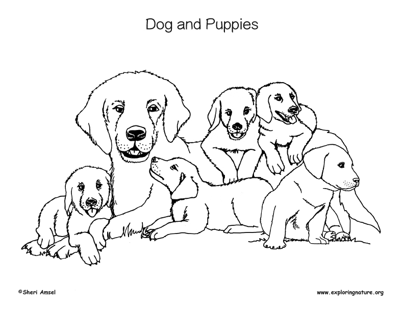 Dogs and Puppies Coloring Page