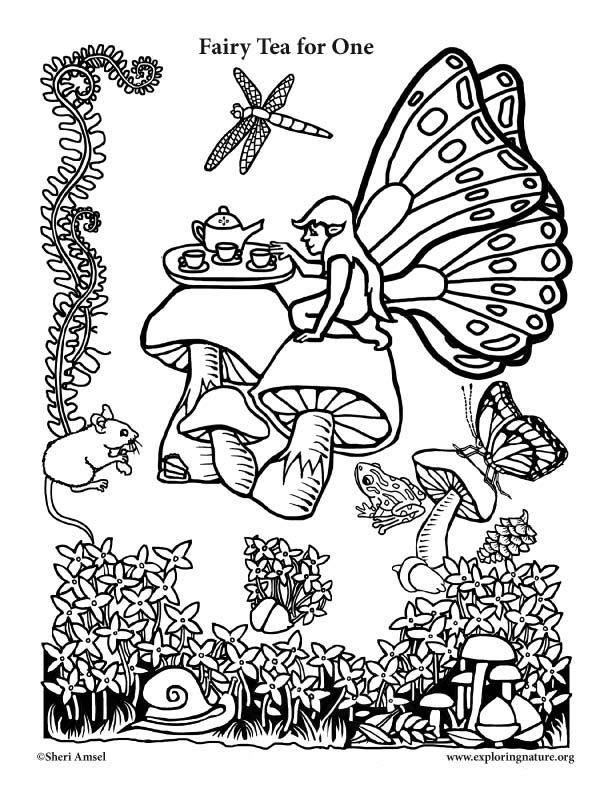 fairy tea for one coloring page. Black Bedroom Furniture Sets. Home Design Ideas