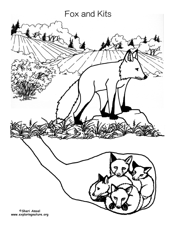Fox and Kits in Den Coloring Page
