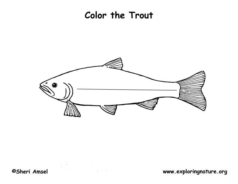 mike trout logo coloring pages - photo#31