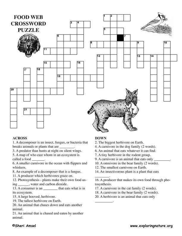 crossword foodweb older72 Puzzle Games Online Nature