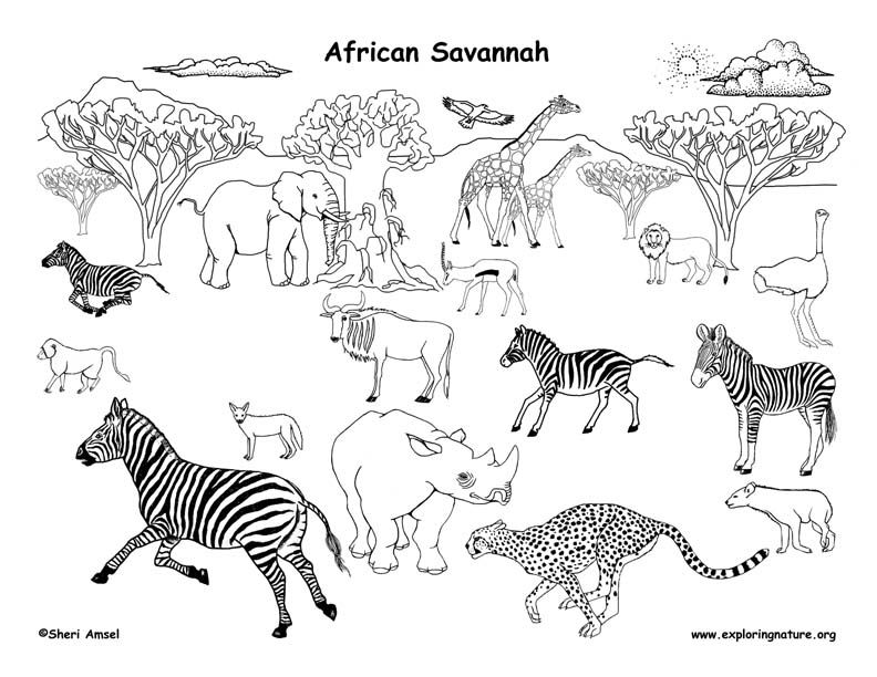savanna trees coloring pages - photo#25