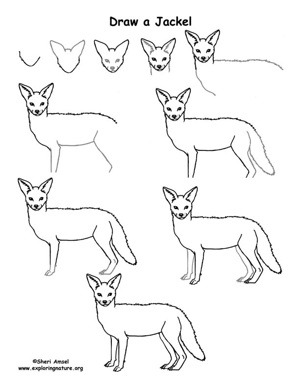 Kenya Animals Coloring Pages : Draw an african grassland