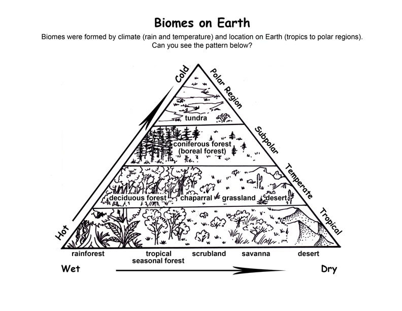Biome Locations on Earth