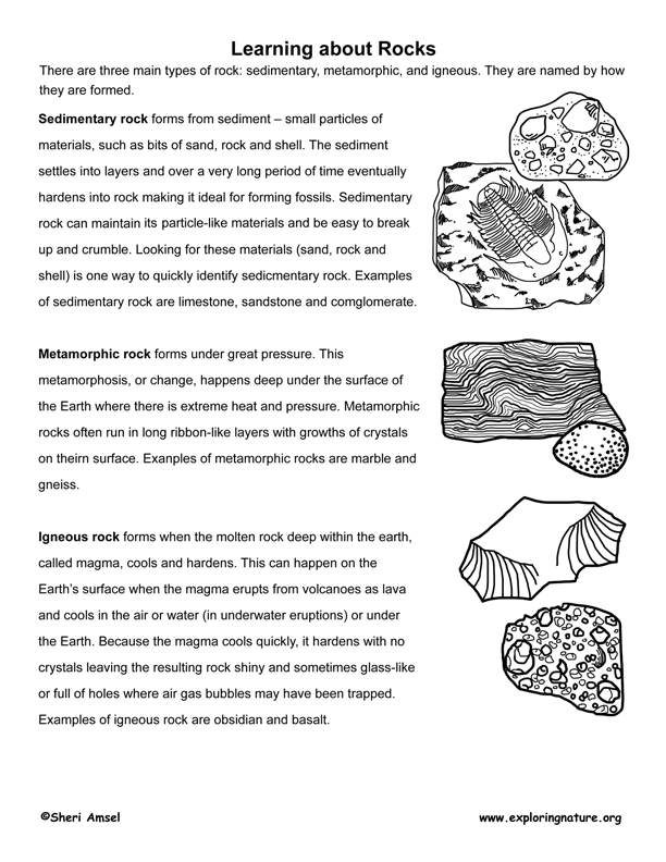 Rock Identification, the Rock Cycle and Assessment