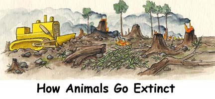 what happened to downtime the extinction The impact that wiped out the dinosaurs  what happened in brief  and leading to the extinction of roughly 3/4 of species that existed at that time,.