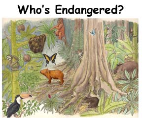 Which Animals are Endangered?