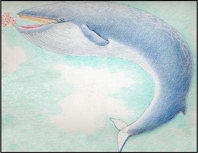 Whale (Blue), blue whale