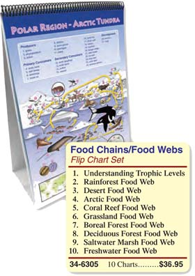 Food Chains/Food Webs Flip Chart Set