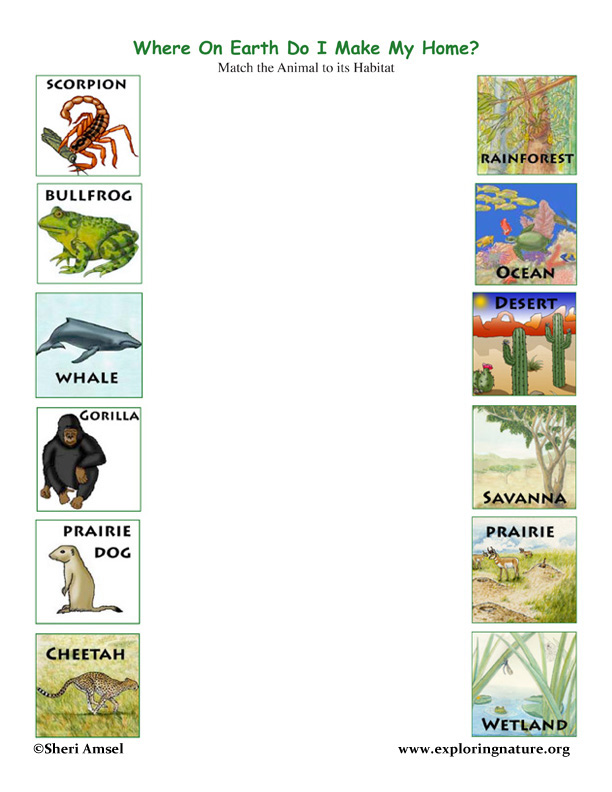 Printables Habitat Worksheets animal habitat worksheets plustheapp match the animals to their habitats game exploring nature
