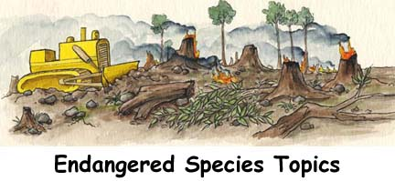 Topics About Endangered Species