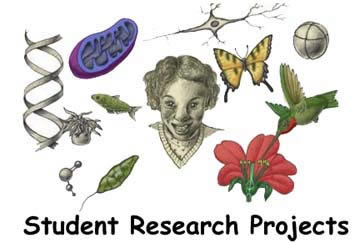 Publishing Student Projects