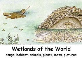 wetlands of the world index exploring nature educational resource. Black Bedroom Furniture Sets. Home Design Ideas