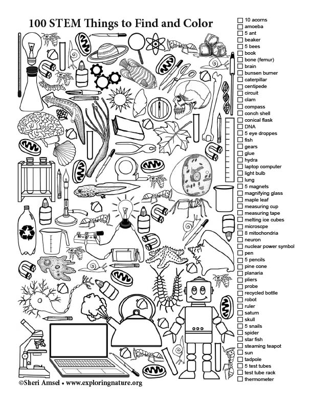 100 STEM Things to Find and Color (Black and White)