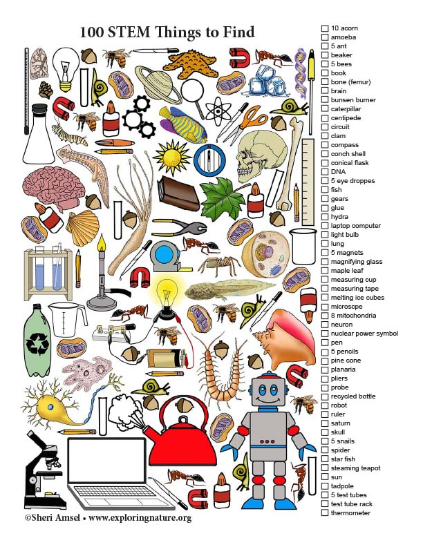 100 STEM Things to Find (Color)
