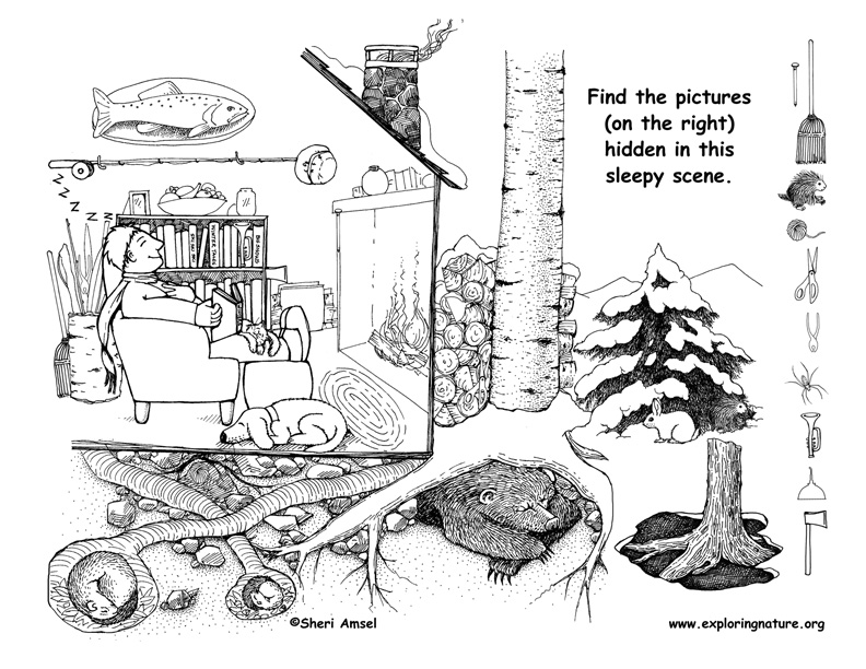Hidden Pictures Coloring Sheets