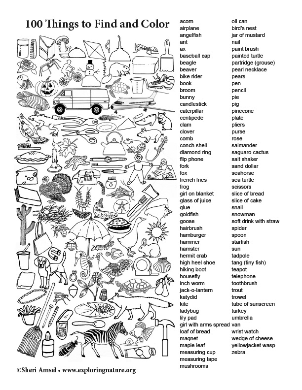 100 Things to Find and Color (Black and White)